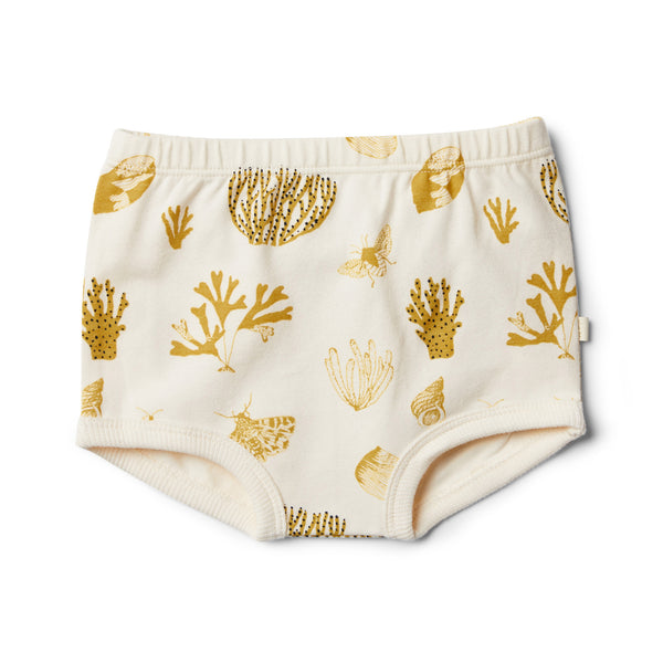 Organic Little Shell Nappy Pant - Wilson and Frenchy