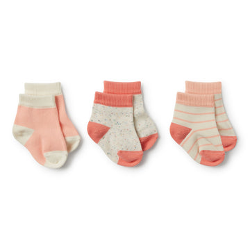 Watermelon, Peach Dust, Fleck 3 Pack Baby Socks