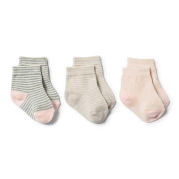 OYSTER, GREY, EGGSHELL - 3 PACK BABY SOCKS - Wilson and Frenchy