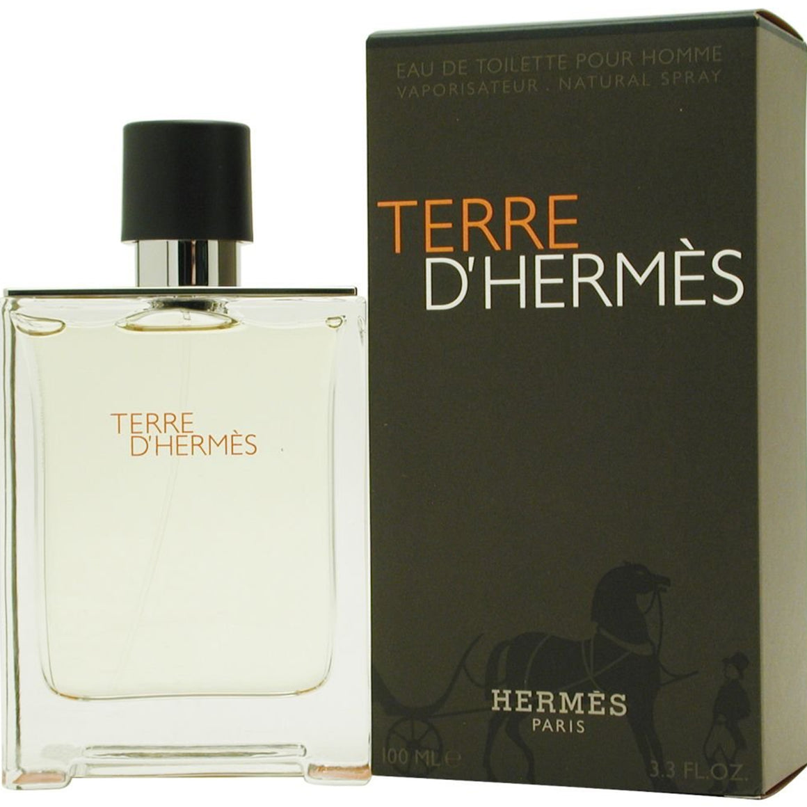 Hermes Terre D'Hermes Eau de Toilette spray for Men, 3.3 Ounce