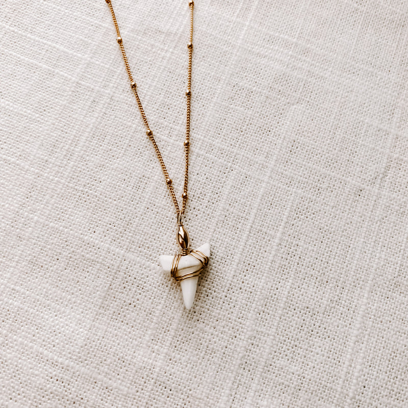 SHEVLIN SHARK TOOTH NECKLACE