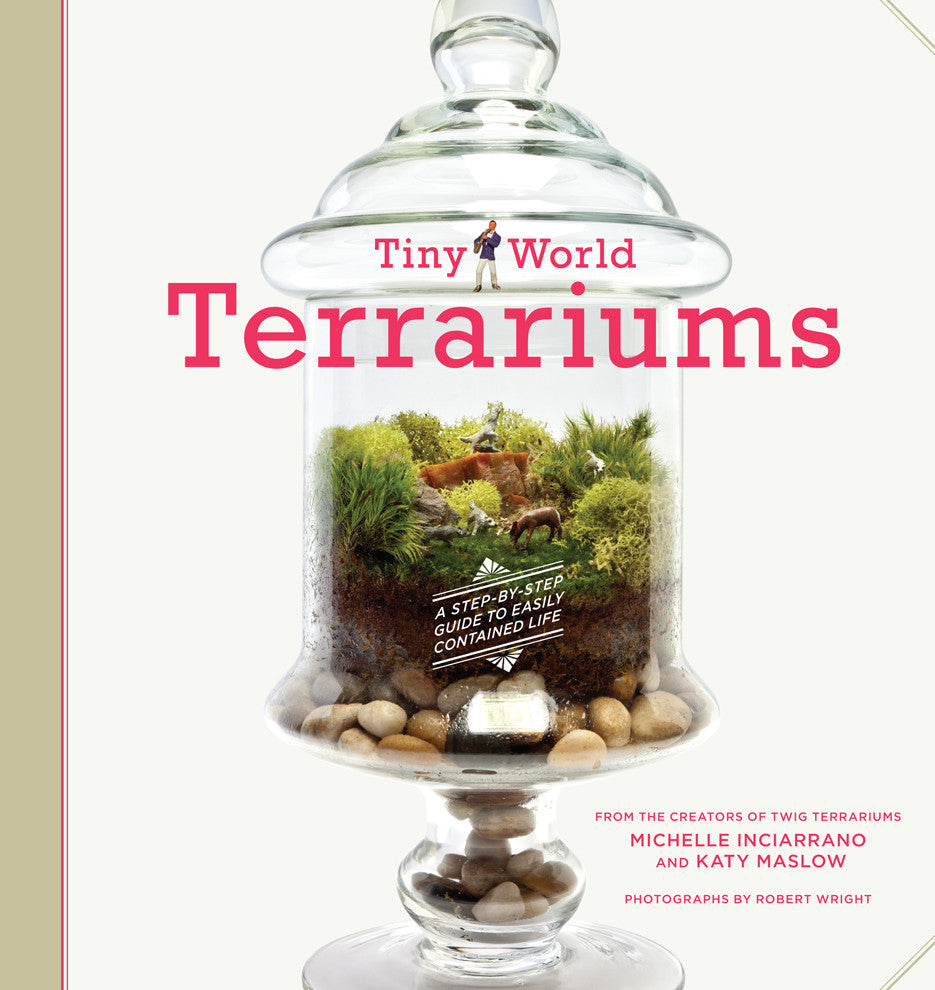 Diy Kits Twig Terrariums
