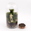 "Michelangelo's ""David"" Moss Terrarium (SOLD OUT)"