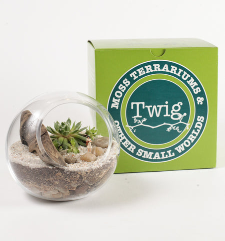 Group Succulent Terrarium-Making Workshop 5/20/2017