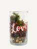 """Just The Way You Are"" Terrarium"