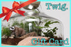 Twig Gift Certificate $150