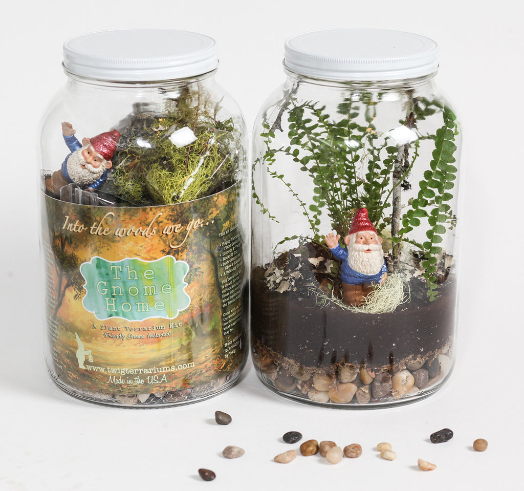 The Gnome Home Diy Plant Terrarium Kit By Twig Terrarium Twig