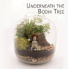 """Underneath the Bodhi Tree"" Plant Terrarium (NYC Local Only)"