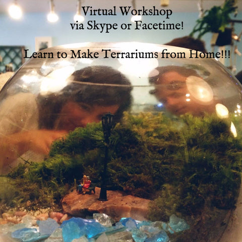 VIRTUAL Private Workshop - Schedule & Skype!