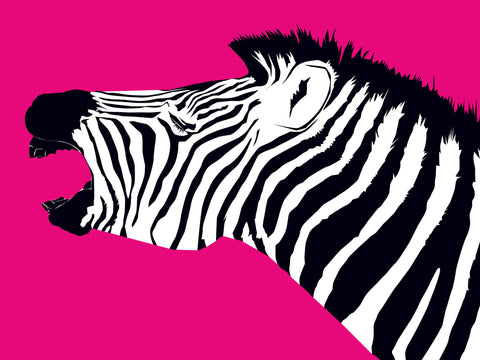 Pink Zebra Facing West