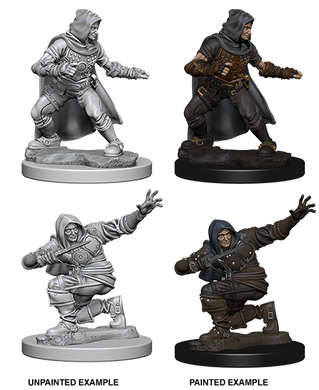 Pathfinder Deep Cuts Unpainted Miniatures Human Male Rogue