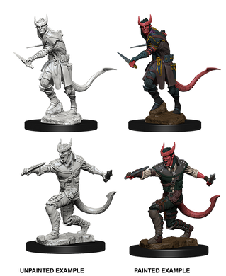 D&D Nolzurs Marvelous Unpainted Miniatures Tiefling Male Rogue
