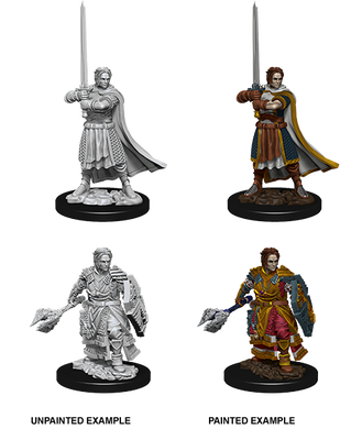 D&D Nolzurs Marvelous Unpainted Miniatures Male Human Cleric