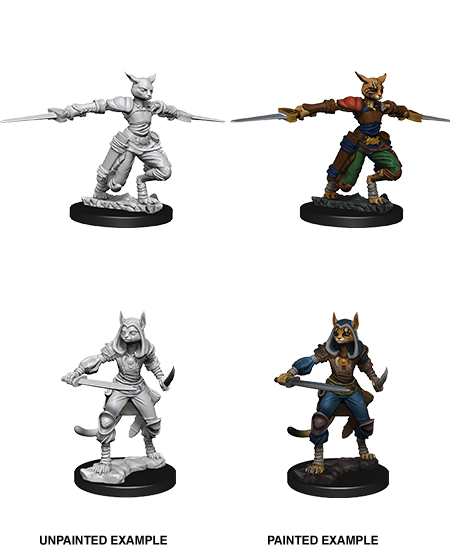 D&D Nolzurs Marvelous Unpainted Miniatures Female Tabaxi Rogue