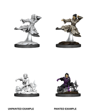 D&D Nolzurs Marvelous Unpainted Miniatures Female Human Monk