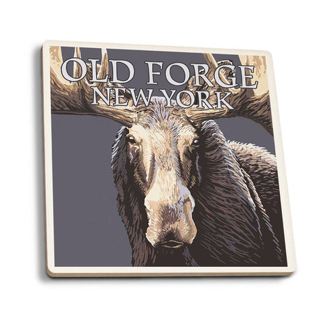 Moose Up Close Old Forge Coaster