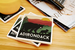 Adirondack Park Black Bear Coaster