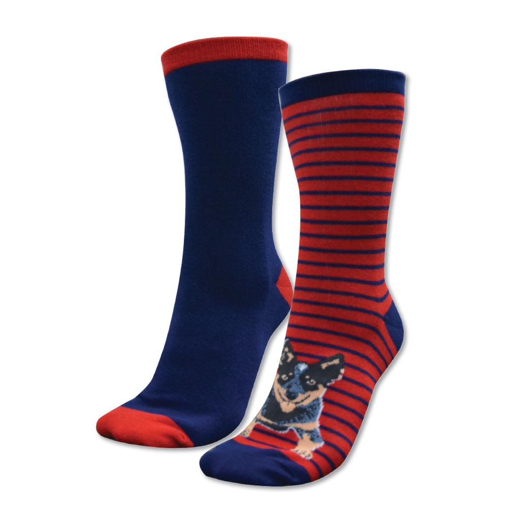 Kids Homestead Socks Twin Pack Navy/Red  (Blue Heeler)