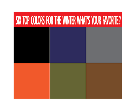 SIX TOP COLORS OF WINTER