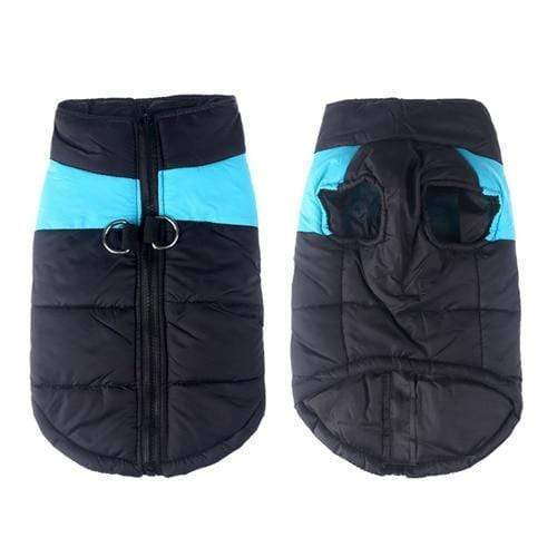 SportsChest Dog Coat blue / S Waterproof Dog Coat