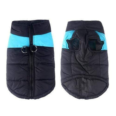 Image of SportsChest Dog Coat blue / S Waterproof Dog Coat