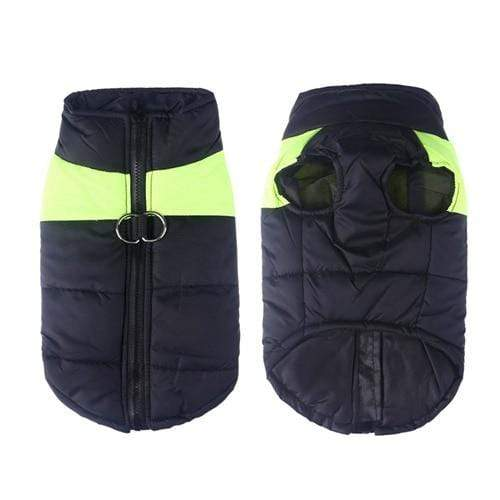 SportsChest Dog Coat green / S Waterproof Dog Coat