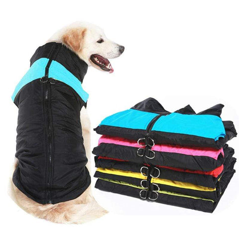 Image of SportsChest Dog Coat red / S Waterproof Dog Coat