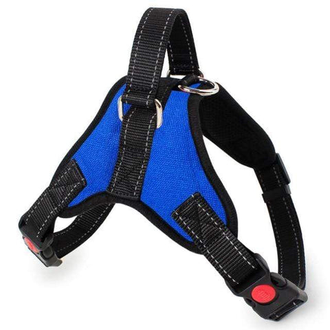 Image of SportsChest Dog Harness BLUE / S Dogs Harness