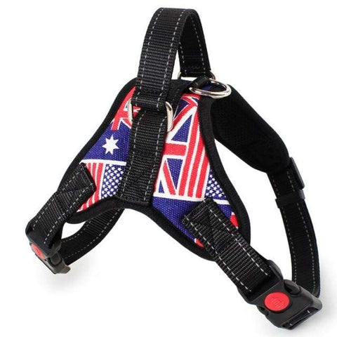 Image of SportsChest Dog Harness ENGLAND / S Dogs Harness