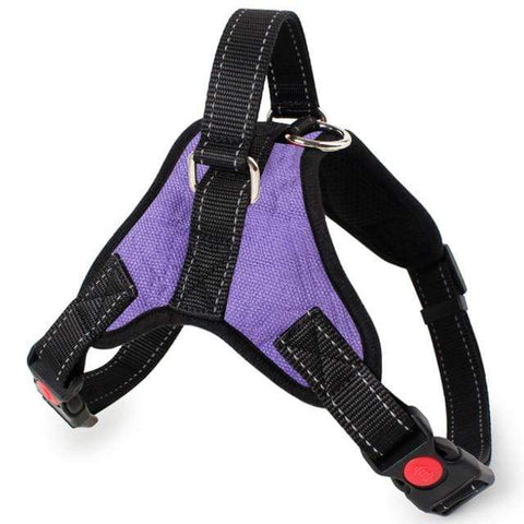 Image of SportsChest Dog Harness PURPLE / S Dogs Harness