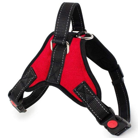Image of SportsChest Dog Harness RED / L Dogs Harness