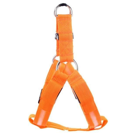 Image of SportsChest LED Pet Safety Harness Orange / L LED Dog Safety Harness