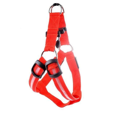 Image of SportsChest LED Pet Safety Harness Red / L LED Dog Safety Harness
