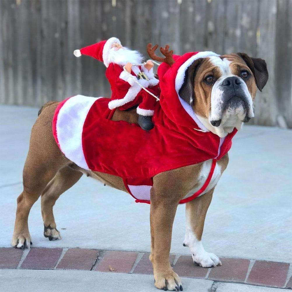 SportsChest STORE Santa Claus Christmas Costume for Large & Small Dogs