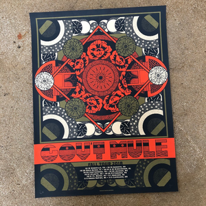 Gov't Mule Fall Tour poster