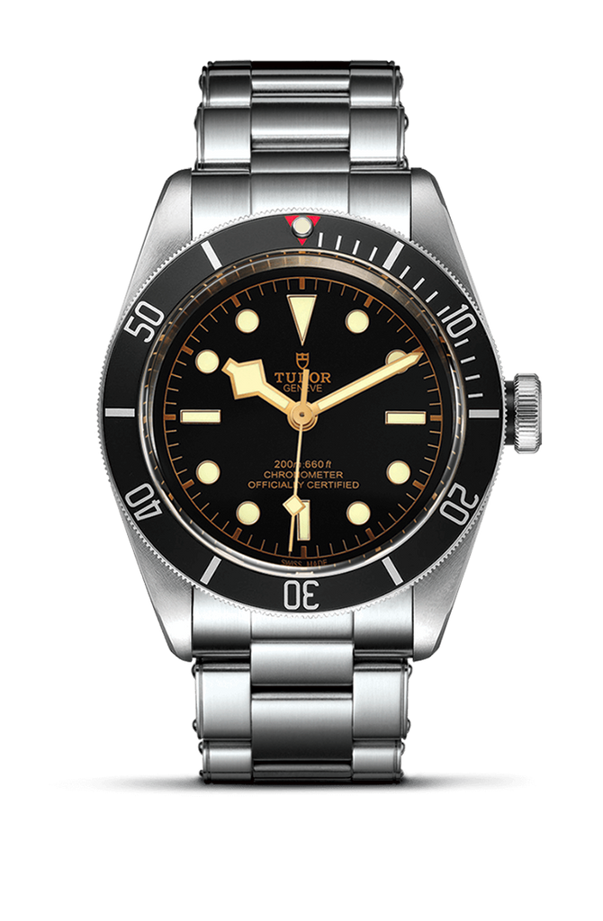 Tudor Black Bay - 41mm 79230N