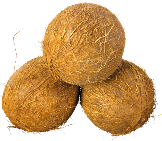 Product-Coconut