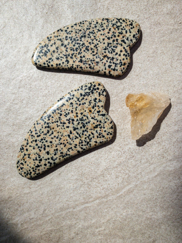 Nourished Cove | Gua Sha Massage Crystal | Dalmatian Jasper