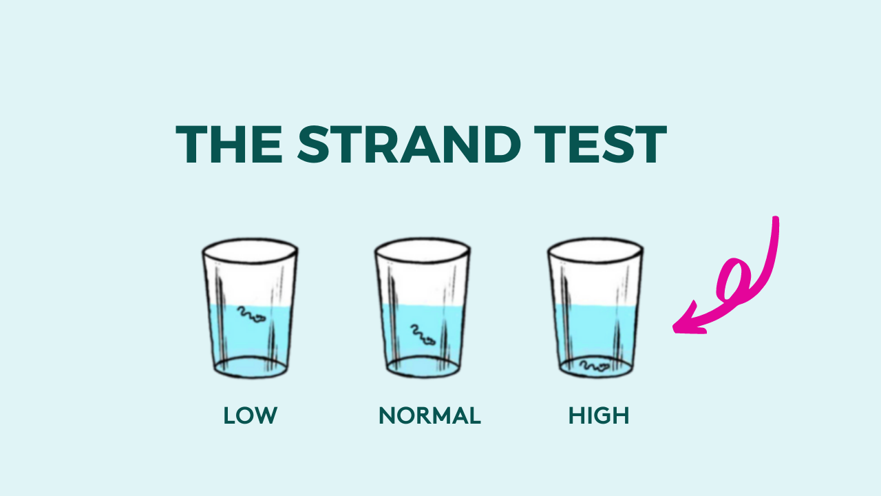 the porosity strand test