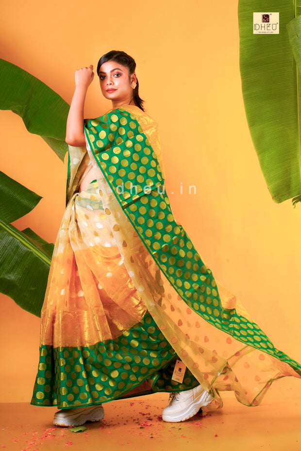 Silk Jamdani  saree - Boutique Dheu