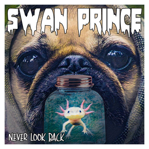 Swan Prince - Never Look Back