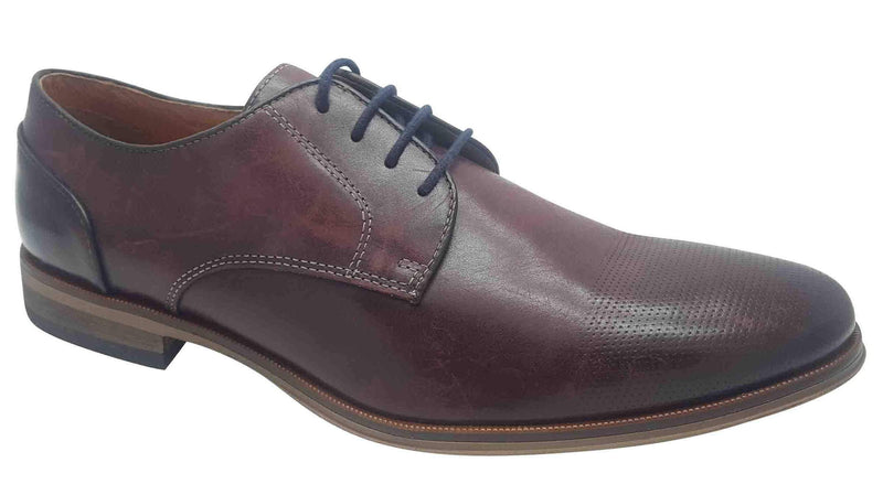 Dubarry - David Burgundy Shoes