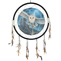 Decorative Heart of the Storm Owl Design Dreamcatcher Large
