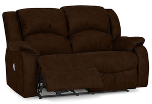 Dane Reclining Loveseat (Palliser)