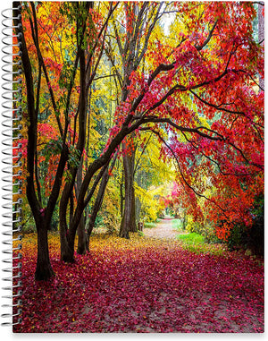 "July 2020 - June 2021 Softcover Planner - 8.5"" x 11"" - Colorful Autumn Alley Cover"