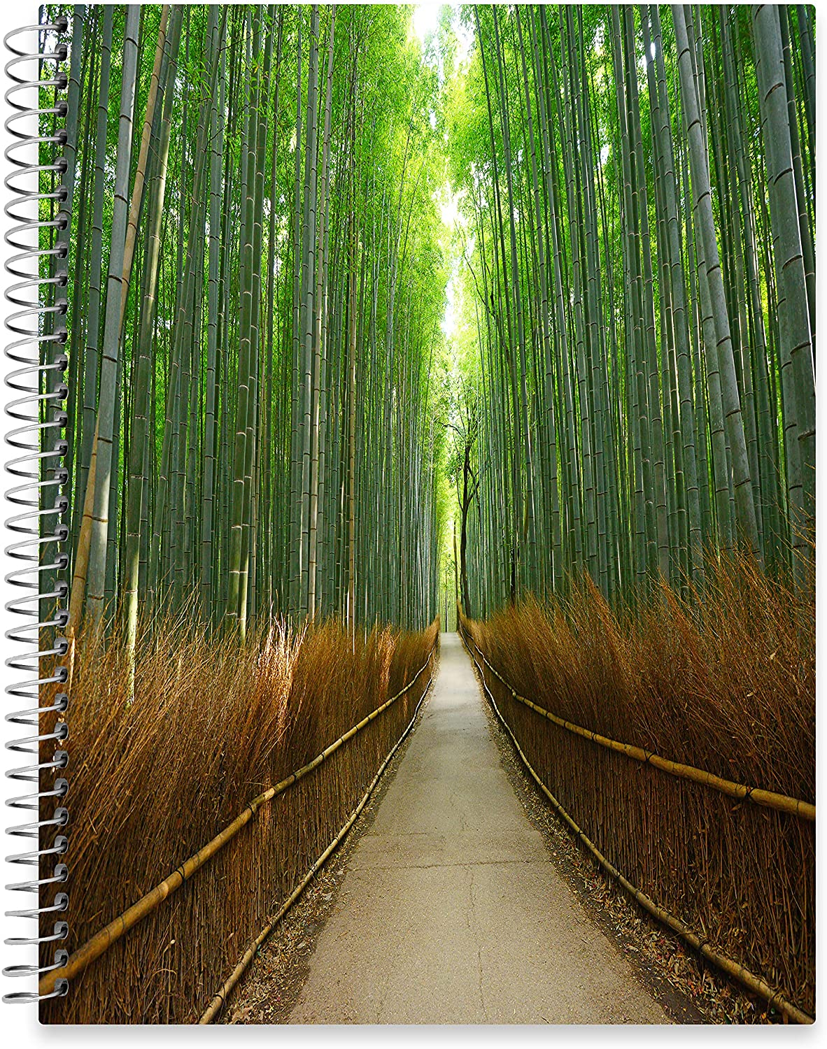 "July 2020 - June 2021 Softcover Planner - 8.5"" x 11"" - Bamboo Forest Cover"
