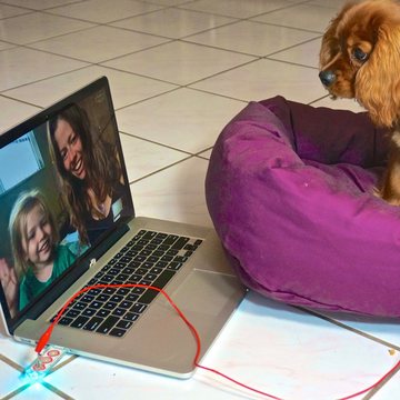 Makey Makey dog bed