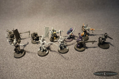 Dark Eldar Warriors (9) + Wych (1)