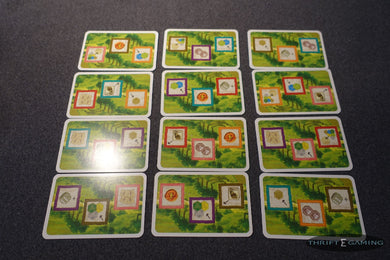 Castles of Burgundy Expansion Trade Routes Cards