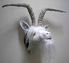 Goat with Horns Kit
